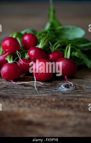 Fresh radishes on the rustic wooden table - Stock Photo