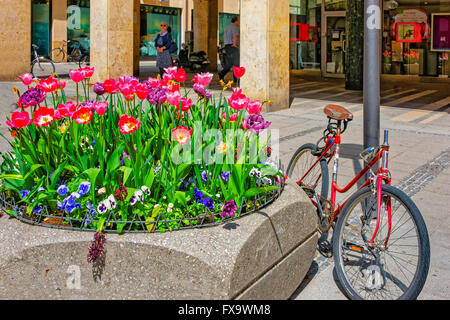 MUNICH, GERMANY - MAY 8, 2013: Bicycle parked near street flowerbed and blooming flowers in the center of Munich - Stock Photo