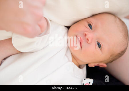 A face on view of a newborn baby boy with blue eyes in a white sleep suit holding his father's hand while in his - Stock Photo