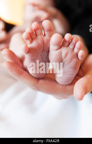 A closeup crop newborn baby boy's tiny but perfect feet in the palm of his mother's hand - Stock Photo