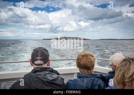 A boat trip to the Farne Islands, Northumberland - Stock Photo