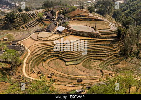 Rice fields in SaPa during Winter - Stock Photo