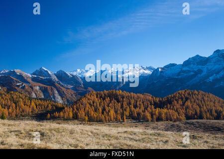 Gotzenalm in the Berchtesgadener Alpen in autumn, Berchtesgaden National Park, Bavaria, Germany - Stock Photo