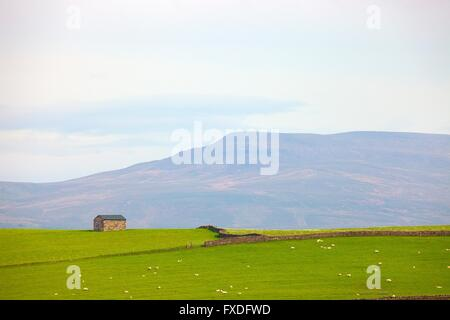 Eden Valley. Barn near Arklow Hill with Nine Standards Rigg in background. Crosby Garrett, Kirkby Stephen, Eden - Stock Photo