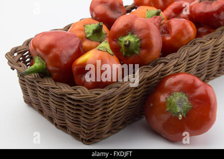 Rustic basket of red chili peppers isolated on white background - Stock Photo