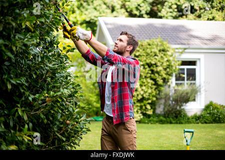 Man trimming plants at yard - Stock Photo
