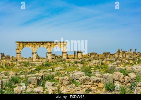 Arches on the main street - The Decumanus Maximus -. Volubilis, remains of Roman city near Meknes. - Stock Photo