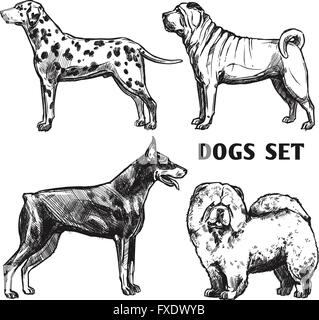 Sketch Dogs Portrait Set - Stock Photo
