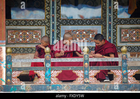 Monks in the Tamzhing Monastery, Jakar, Bumthang Valley, Bhutan - Stock Photo