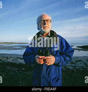 Yachts race on a placid sea, Strangford Lough, Ireland - Stock Photo