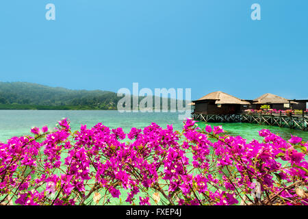 View of over water bungalows and bougainvillea.Beautiful view of water bungalows in luxury resort,shore  and bougainvillea. - Stock Photo