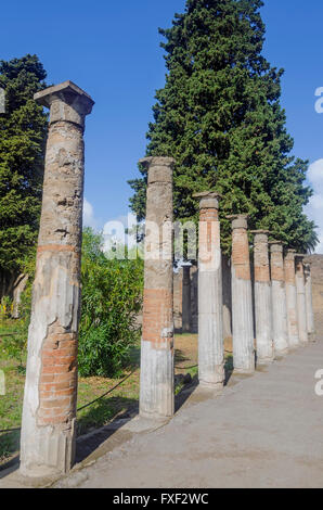 Standing Roman columns or pillars in garden of House of the Faun Pompeii Italy - Stock Photo