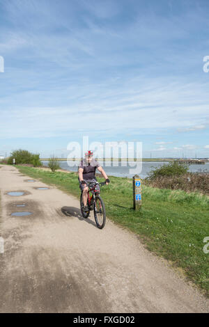 A male cyclist on the Thames Pathway near Crossness in London, SE2, UK - Stock Photo