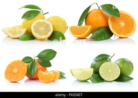 Collection of oranges mandarins lemons fruits isolated on a white background - Stock Photo