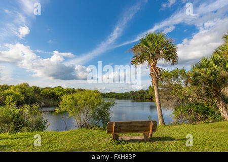 Bench overlooking water in Deer Prairie Creek in  Deer Prairie Creek Preserve in Venice Florida Stock Photo