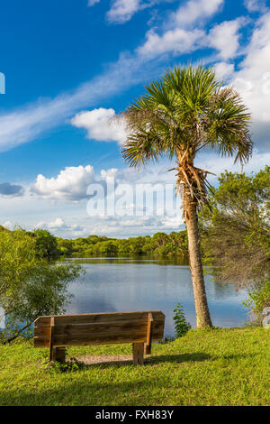 Bench in Deer Prairie Creek in  Deer Prairie Creek Preserve in Venice Florida Stock Photo