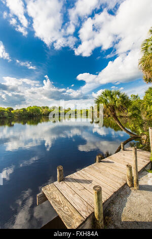 Deer Prairie Creek in  Deer Prairie Creek Preserve in Venice Florida Stock Photo