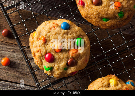 Homemade Candy Coated Chocolate Chip Cookies Ready to Eat - Stock Photo