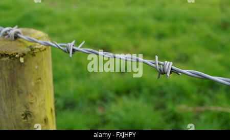 High angle view of barbed wire fence and wooden post - Stock Photo