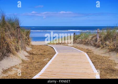 Langeoog Duene mit Weg - Langeoog dune and track 01 - Stock Photo