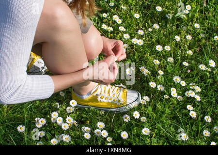Woman picking daisies in a daisy field - Stock Photo