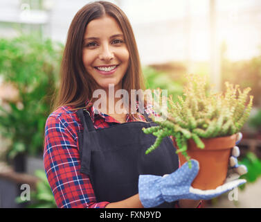 Smiling attractive young female employee at a flower nursery holding a potted plant for sale in her hands, glowing - Stock Photo