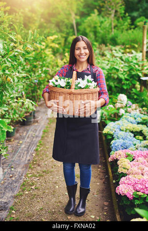 Happy successful young female florist collecting flowers for sale in a large wicker basket standing smiling at the - Stock Photo