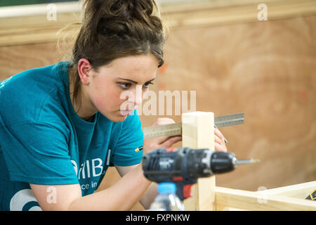 Female apprentices in the construction and engineering industry - Stock Photo