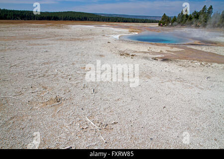 Celestine Pool at Fountain Paint Pot, Yellowstone National Park - Stock Photo