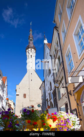 Tallinn, Estonia, street of the old city with bright houses and a town hall spike - Stock Photo
