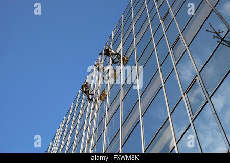 London, England, UK; 18th April, 2016. Window cleaners abseil down an office block window on the Euston Road in - Stock Photo