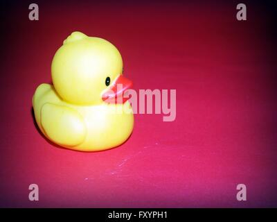 Rubber duck and friends - Stock Photo