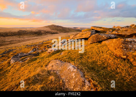 Sunrise on the slopes of Showery Tor on Bodmin Moor - Stock Photo