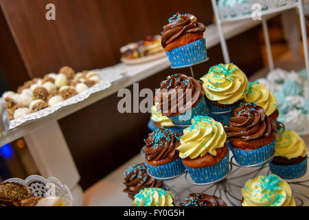 Vanilla and chocolate cupcakes in natural light - Stock Photo
