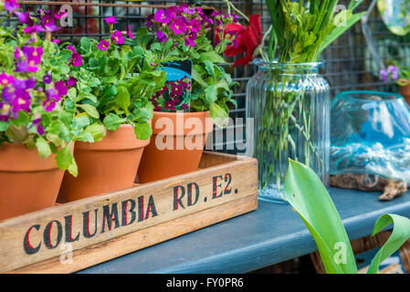 London, United Kingdom - April 17, 2016: Columbia Road Flower Sunday market. Shop windows display - Stock Photo