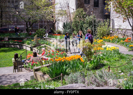 Visitors to the West Side Community Garden in New York enjoy the over 13,000 tulips in bloom during their Tulip - Stock Photo