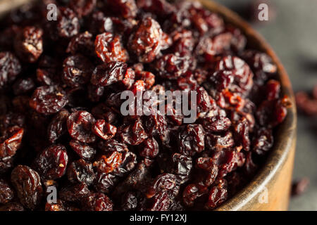 Homemade Dry Black Currants Ready to Eat - Stock Photo