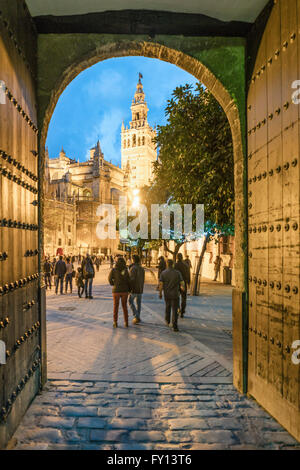 Giralda bell tower , cathedral, view from Los Reales Alcazares, Sevilla,  Andalucia, Spain, Stock Photo