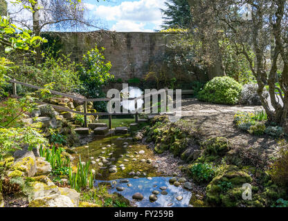 View of the stream and stepping stone path in the Friends Garden near Tropical World, Roundhay Park , Leeds, West - Stock Photo