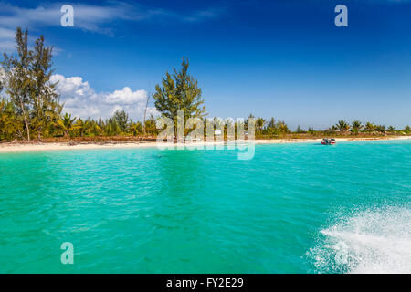 For sale sign on remote beach - Stock Photo