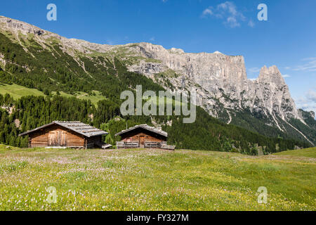 Spring on the Seiser Alm in the Schlern-Rosengarten Nature Park, mountain huts in front of Schlern with the Santner - Stock Photo