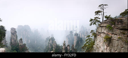 Foggy mountain landscape scenery of Zhangjiajie National Forest Park, Zhangjiajie, Hunan, China - Stock Photo