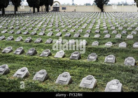 War graves in the military cemetery Fogliano di Redipuglia, over 14 000 Fallen of the Austria-Hungarian Army, World - Stock Photo