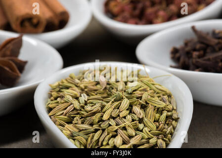 Fennel Seeds in White Spoon with five spice ingredients in background - Stock Photo