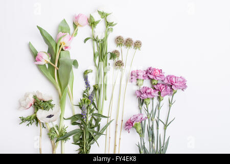 Bunch of pink tulips, white anemones, pink cloves and white buttercups lying on white background from the top - Stock Photo