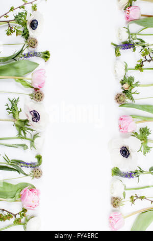 Pink tulips, white anemones, pink cloves and white buttercups lying on white background in two rows, left side and - Stock Photo