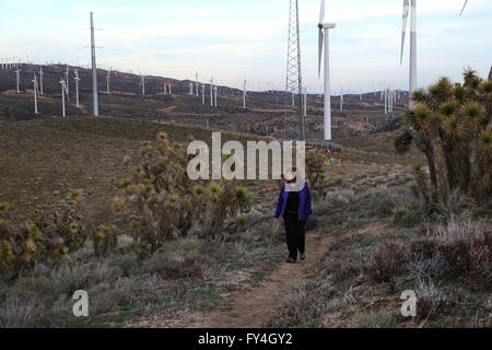Hiker on Pacific Crest Trail with windmills Tehachapi California - Stock Photo