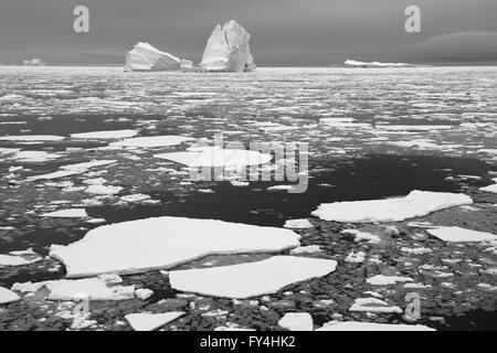 Icebergs and Pack Ice  Antarctic Circle  (Black and White)  Antarctic Peninsula - Stock Photo