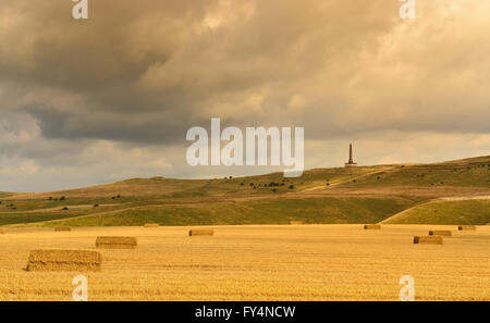 The Lansdowne monument on Cherhill hill (Oldbury castle), a distinctive landmark on the Wiltshire downs. - Stock Photo