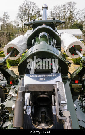 105mm Light Field Gun Howitzers from the Royal Artillery with instructions 'SALUTING PURPOSES ONLY' not for use - Stock Photo